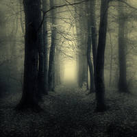 Sine Tempore by Oer-Wout