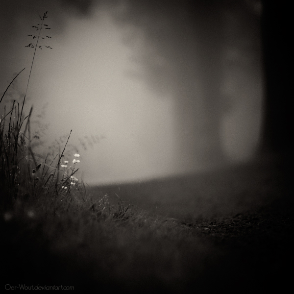Hello Darkness by Oer-Wout
