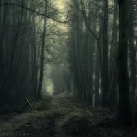 a Deeper Silence by Oer-Wout