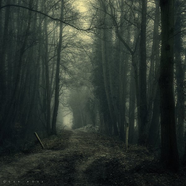 a Deeper Silence by Oer-Wout