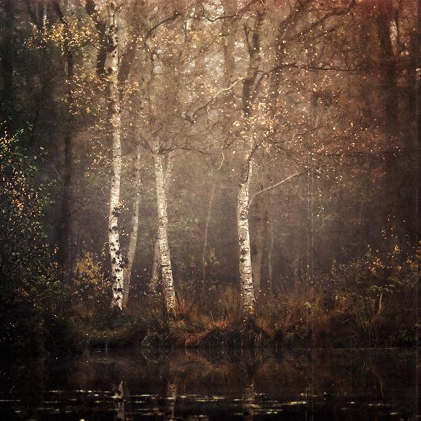 l'apres-midi by Oer-Wout