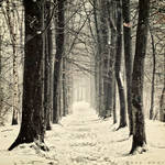 Winter Mantra