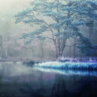 I remember You by Oer-Wout