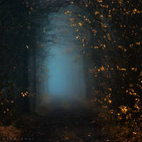 Into Beyond by Oer-Wout