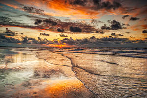 Peachy by Oer-Wout
