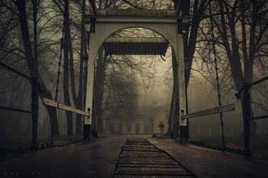 In Fog we Trust by Oer-Wout