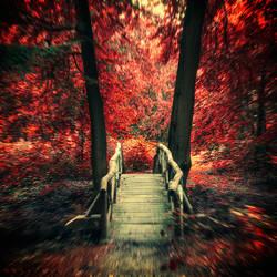 Autumn Fever