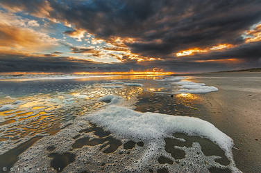 Day by Day by Oer-Wout