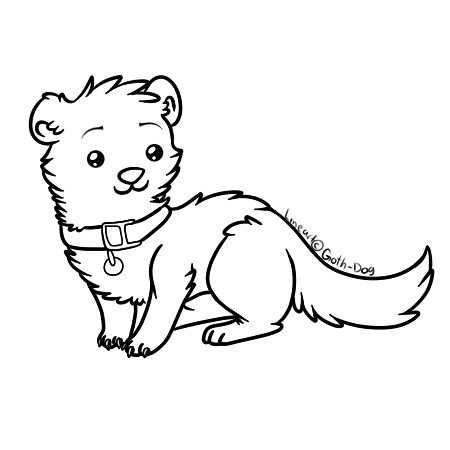 Ferret Lineart by ganbariMASUU