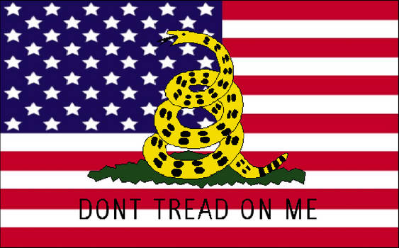 Don't Tread on this Flag