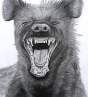 Hyena by vanderh7