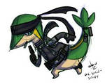 solid snivy