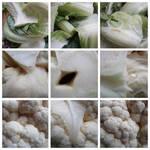K012 Autour d'un chou-fleur
