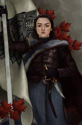 Arya Stark by TottieWoodstock
