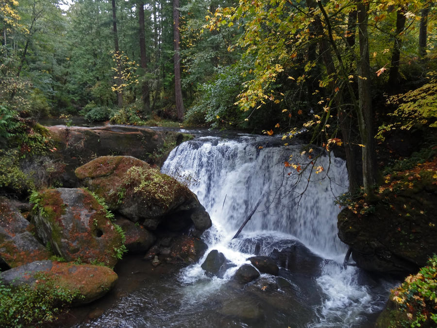 Woodland Waterfall by Track-Maidens