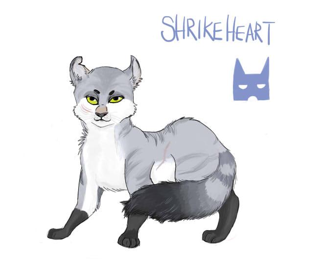 Warriors OC- Shrikeheart by Mohawkdandy