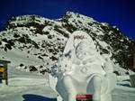 Snow Sculpture by raluk108