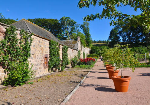 In a Scottish Country Garden