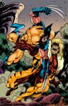 Wolverine vs Sabrethoot