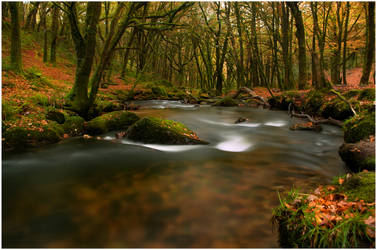 Follow Me Down the River by TamarViewStudio