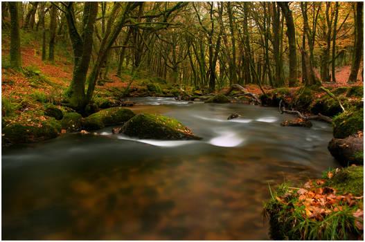 Follow Me Down the River