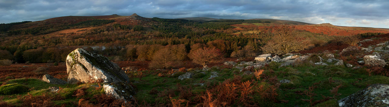 Sheepstor Panorama by TamarViewStudio