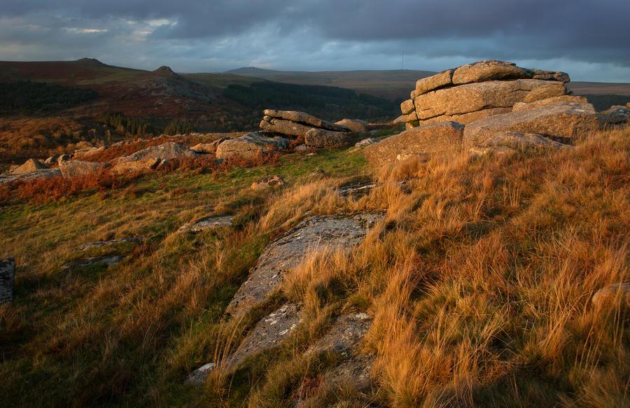 Colours of Dartmoor by TamarViewStudio