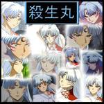 Inuyasha-Sesshoumaru Collage