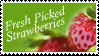 Fresh Picked Strawberries Stamp by Strawberry-of-Love