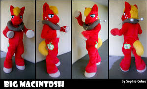 MLP FiM Big Macintosh Cosplay