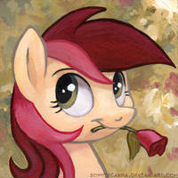 Square Series - Roseluck by SpainFischer