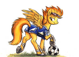 Canterlot High - The Soccer Captain by SpainFischer