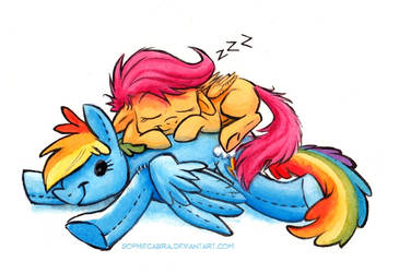 Sketch - Snoozing Scoots by SpainFischer