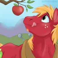 Fan Favorite Series #21 - Big Macintosh by SpainFischer