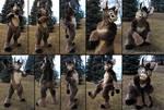 Fursuit - Donkey