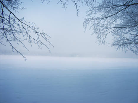 Blue winter dreams
