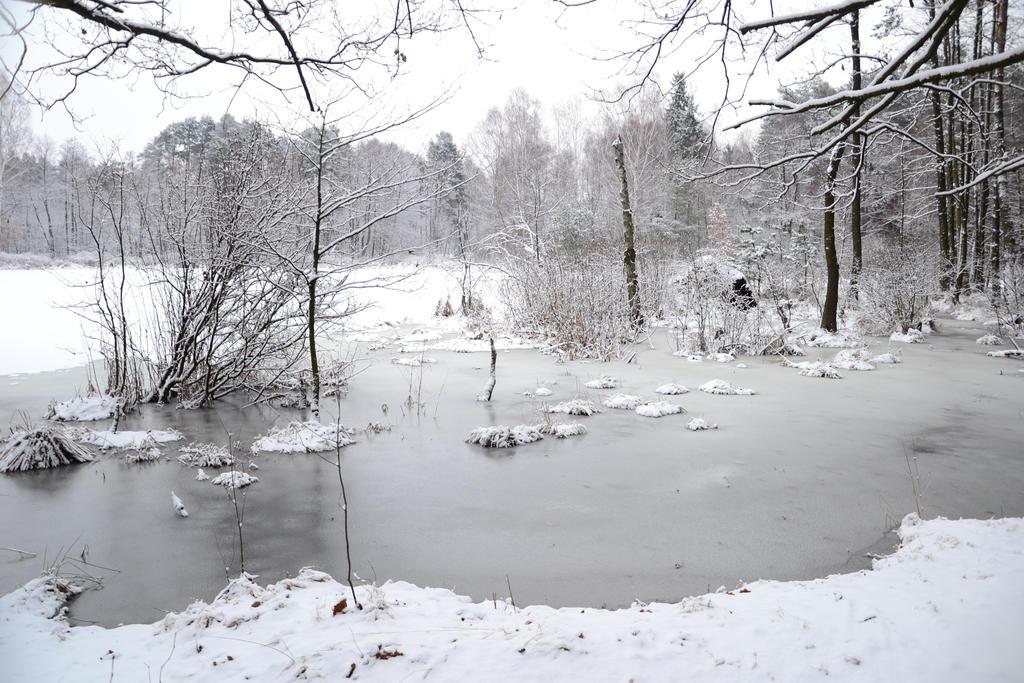 Frozen... by feainne-stock