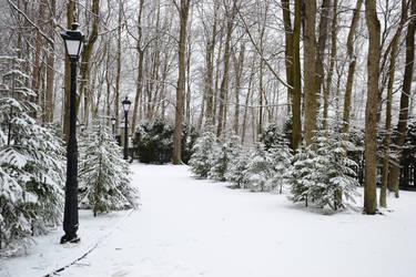 Winter Stroll by feainne-stock