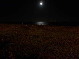 Moon and the Sea and a Bench