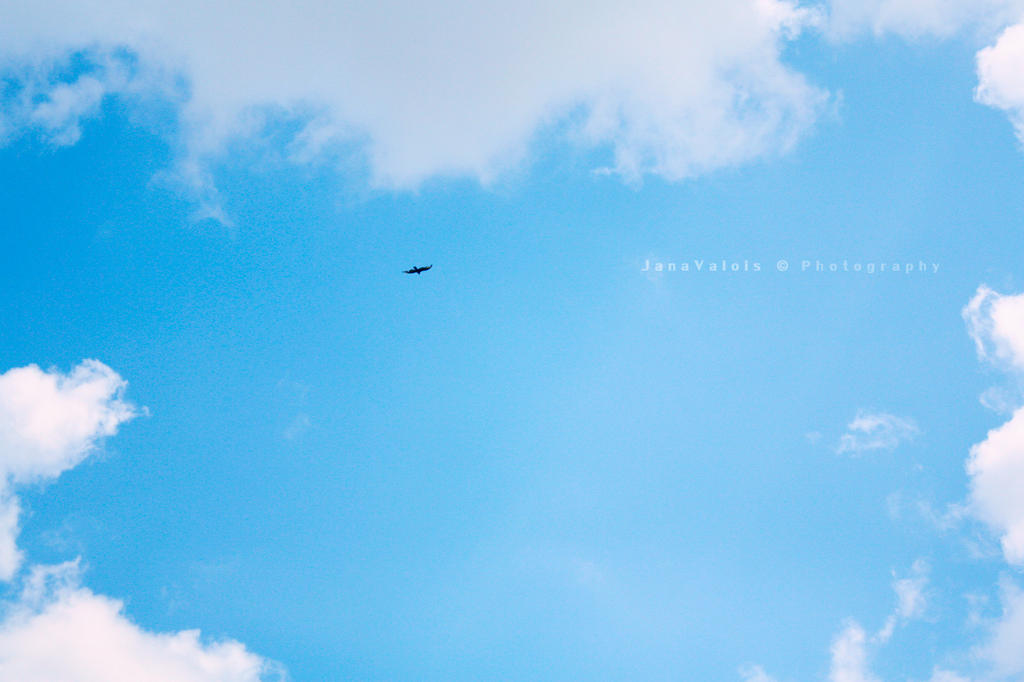 the sky and the  bird by JaneV