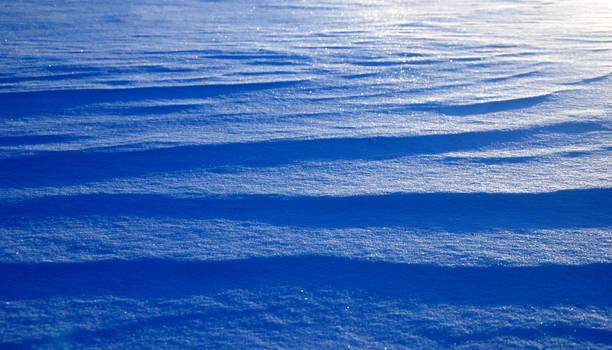 Wave of Snow
