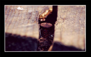 Rusty Screw by essence698