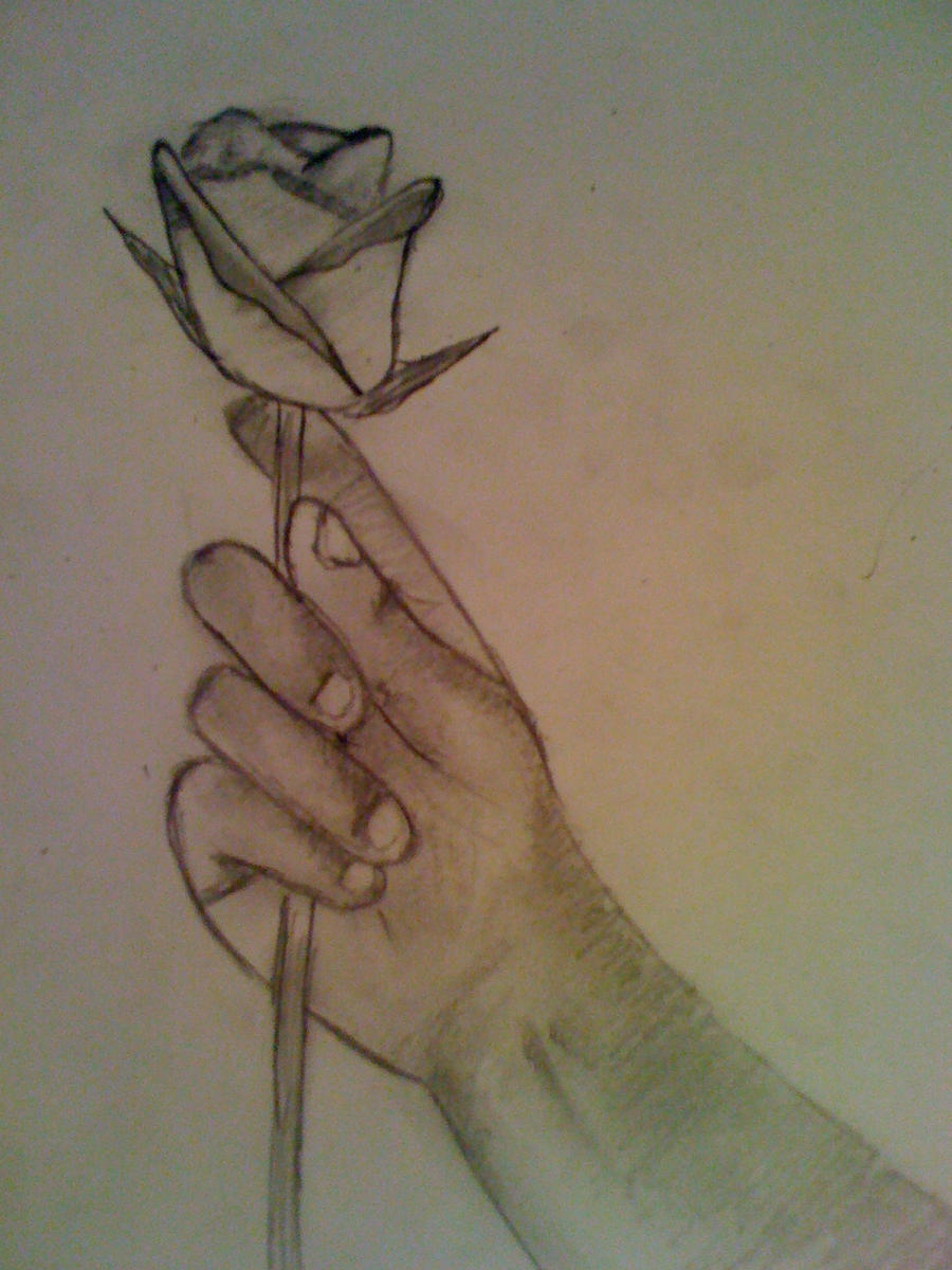 rose in hand by jamesxd on deviantart