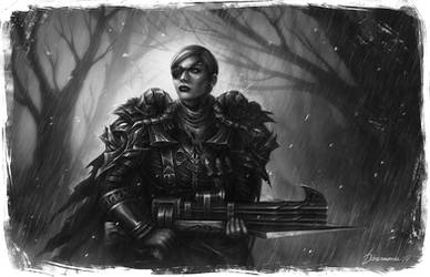 Huntress by d1sarmon1a