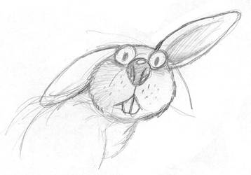 rabbit by YesimGA