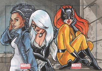 Marvel Universe SC I by YesimGA