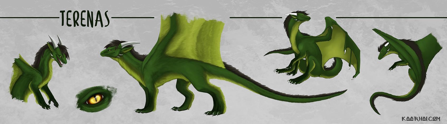 Character Sheet: Terenas