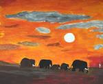 Elephants ... by Chotacabras