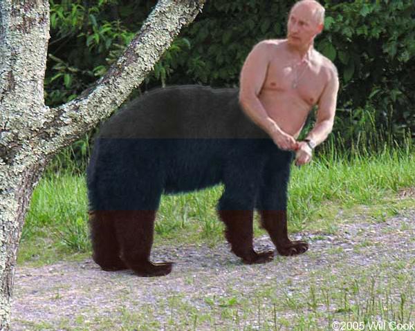 Vladibear Putin by neefly21