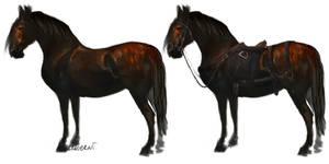 horses by Araverni